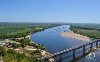 Verdes denunciam novo foco de poluição no Tejo na zona de Santarém
