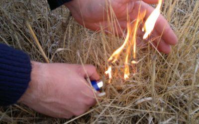 Queimas e queimadas só com autorização das autarquias