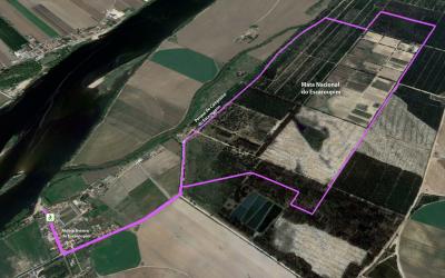 Mata Nacional do Escaroupim vai ter percurso pedestre de natureza