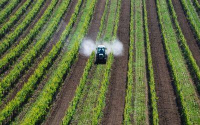 Investimento de 5,2 ME cria Centro de Excelência para a Agricultura em Santarém