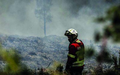 Já arderam 1.109 hectares de floresta em Santarém