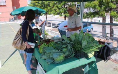 Candidaturas abertas para transformar e comercializar produtos agrícolas em Abrantes, Constância e Sardoal