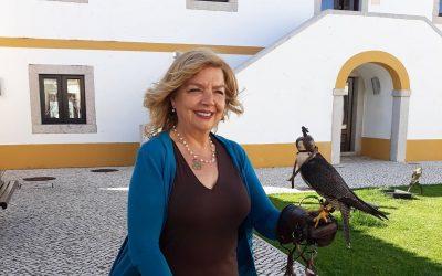 """Câmara de Salvaterra de Magos lança quinto livro infantil """"O falcão e a formiga"""" de Rita Ferro ilustrado por Pedro Rocha e Mello"""