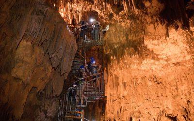 Novas espécies cavernícolas tornam Portugal referência na biodiversidade subterrânea
