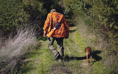 Programa do Governo envolve caçadores na prevenção de incêndios florestais