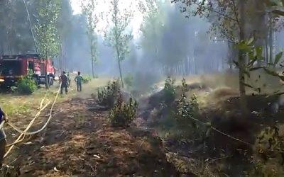 Municipais de Santarém debaixo de fogo: Vídeo polémico pode acabar nas malhas da justiça