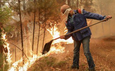 Câmara de Coruche nega responsabilidade em incêndio junto a ETAR