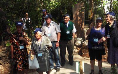 Mais de 500 convivas no VI Festival da Terceira Idade da Misericórdia de Pernes