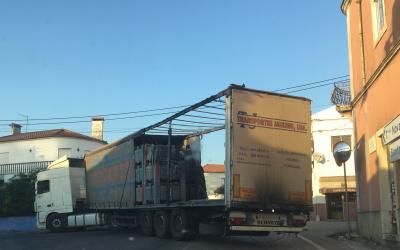 Camião incendeia-se em rotunda de acesso à circular urbana de Santarém