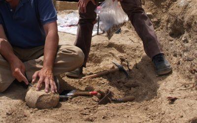 Santarém lança Carta Arqueológica com 461 sítios inventariados