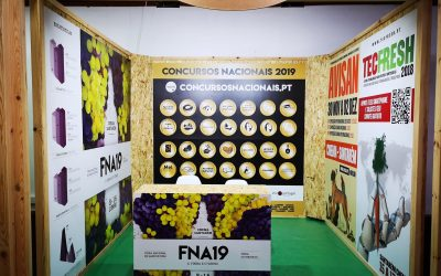 CNEMA marca presença no Festival Nacional de Gastronomia