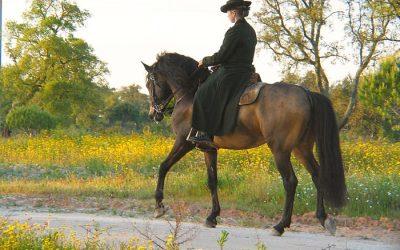 Congresso Internacional na Golegã para projectar internacionalmente o turismo equestre português