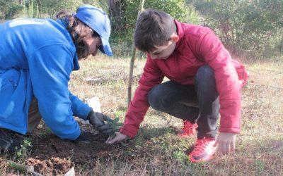 Entroncamento associou-se ao Projecto Plantar Portugal