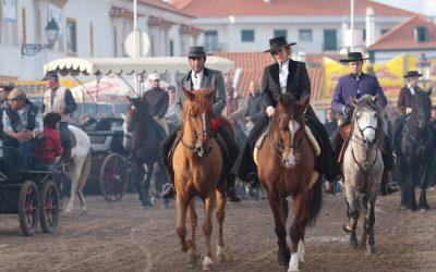 Golegã recebe ExpoÉgua até domingo numa homenagem às mães do efectivo equino