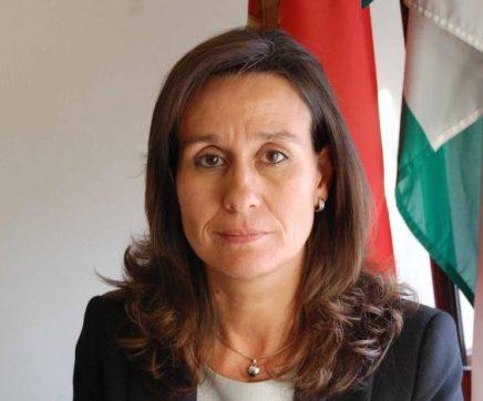 Ministério Público pede nulidade de escrituras e negócios realizados em baldios de Rio Maior