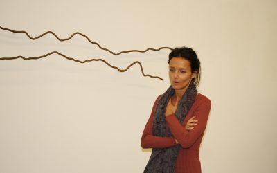 Colecção Figueiredo Ribeiro mostra trabalhos de Inês Norton