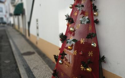 Chamusca disponibiliza árvores de Natal ao comércio local