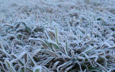 Temperaturas vão manter-se baixas nos próximos dias na região