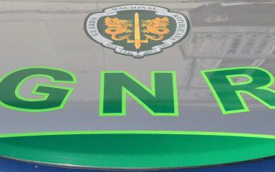 Governo abre concurso para guardas-florestais da GNR