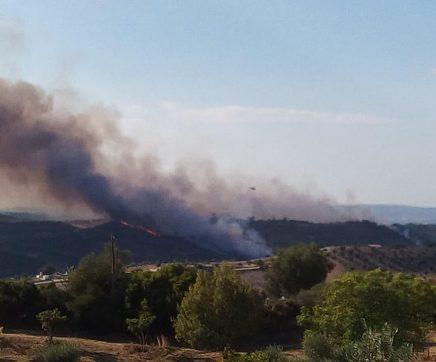 Benavente promove operações de fogo controlado