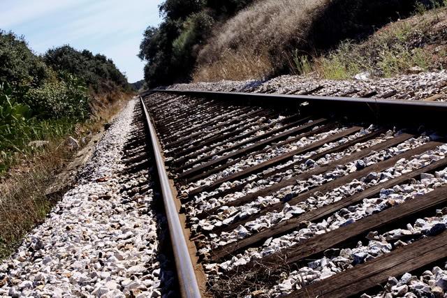 Circulação na Linha do Norte condicionada por atropelamento mortal