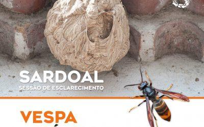 Sessão de Esclarecimento sobre Vespa Asiática  no Sardoal