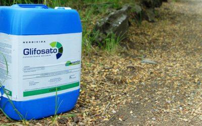 Plataforma apela ao Governo para que proíba venda de herbicidas com glifosato