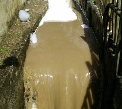 Chamusca quer saber origem de pesticidas e metais pesados em águas superficiais