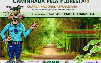 """GNR de Santarém promove """"Caminhada pela Floresta"""""""