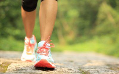 Caminhadas ao Luar e Ginásios ao Ar Livre reforçam programa desportivo no Entroncamento