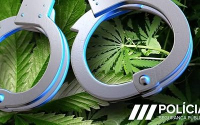 Prisão preventiva para casal acusado de tráfico de droga