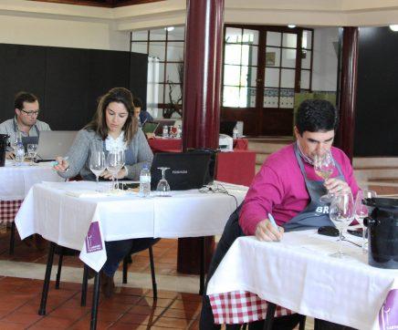 102 vinhos a concurso no Cartaxo