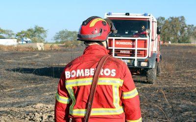 Governo proíbe queimadas até terça-feira