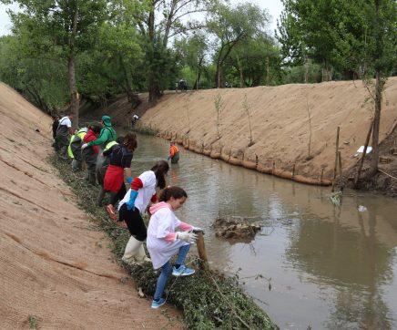 Trabalhadores da Bonduelle reabilitam linha de água da Ribeira das Cabanas