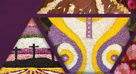 Tapetes de Flores adornam  Igrejas e Capelas do Concelho de Sardoal