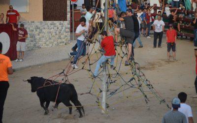 Eleitos de Samora Correia querem canalização de fundos de eventos para apoio às famílias
