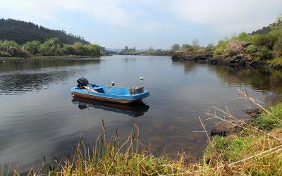 """Rio Tejo """"por um fio"""" entre o Alentejo e Ribatejo"""