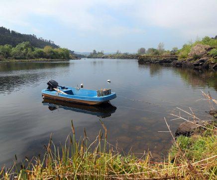 Agência do Ambiente diz que Espanha cumpriu caudais acordados para o rio Tejo