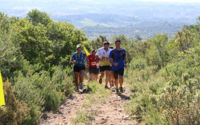 Mais de 500 atletas participam no Trail do Almonda