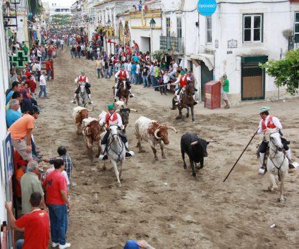 Feira de Maio de Azambuja de 30 de Maio a 3 de Junho