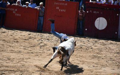 Dois recortadores feridos na largada de touros em Samora Correia
