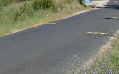 Câmara de Abrantes aplica meio milhão de euros na requalificação da estrada entre Tramagal e Bicas