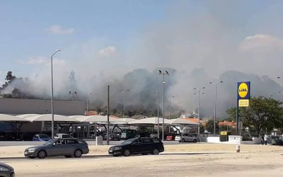 VÍDEO | Fogo mobiliza mais de meia centena de operacionais e um meio aéreo em Coruche