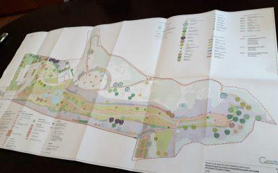 Aprovado projecto de requalificação da mata municipal em Ourém
