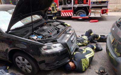 Bombeiros Municipais de Santarém resgatam gato preso em carro