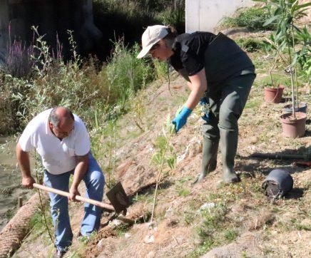 Ribeira de Perofilho recebe primeira acção de conservação