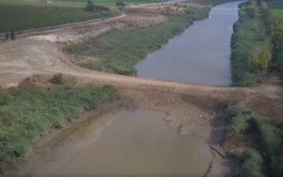 APA nega morte de peixes devido a açude no rio Sorraia
