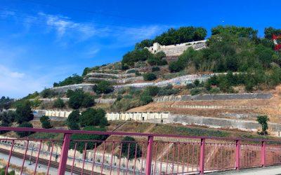 Governo reconhece diferendo com dono de terreno contíguo à Linha do Norte em Santarém