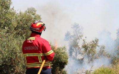 Mais de mil operacionais combatem fogo de Vila de Rei e Mação