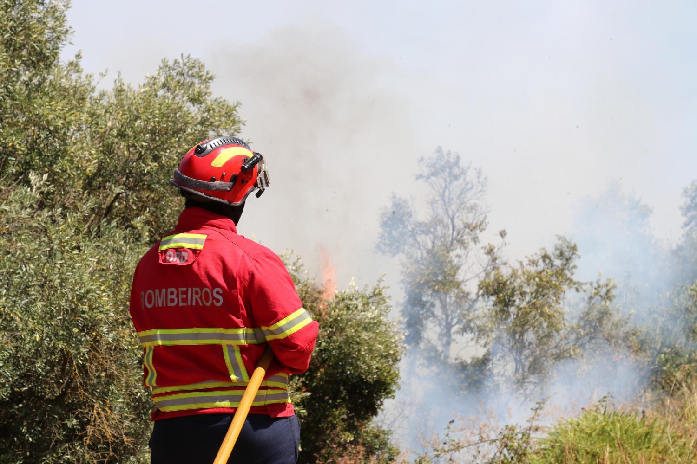 Proteção Civil declara alerta vermelho no distrito de Santarém